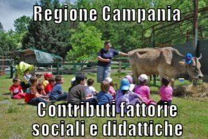 Contributi-fattorie-sociali-e-didattiche-campania