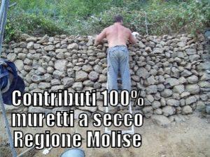 contributi-muretti-a-secco-molise