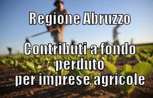 Contributi-agricoltura-Abruzzo