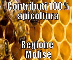 Contributi-apicoltura-Molise