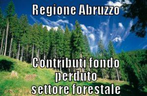 Contributi-settore-forestale-Regione-Abruzzo