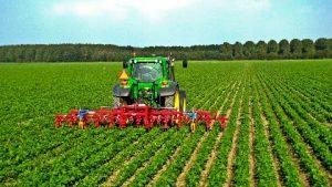 imprese-agricole-campania