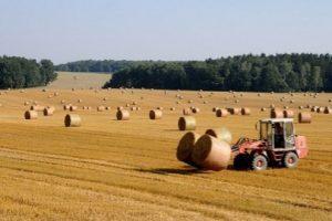 Imprese-agricole-regione-marche