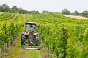 aziende-agricole-veneto