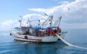 contributi-liguria-giovani-pescatori-fondo-perduto