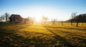 contributi-marcheattività-extra-agricole
