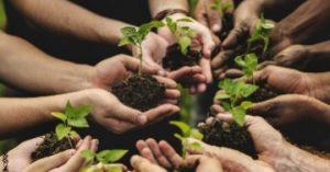 contributi-piemonte-agricoltura-sociale